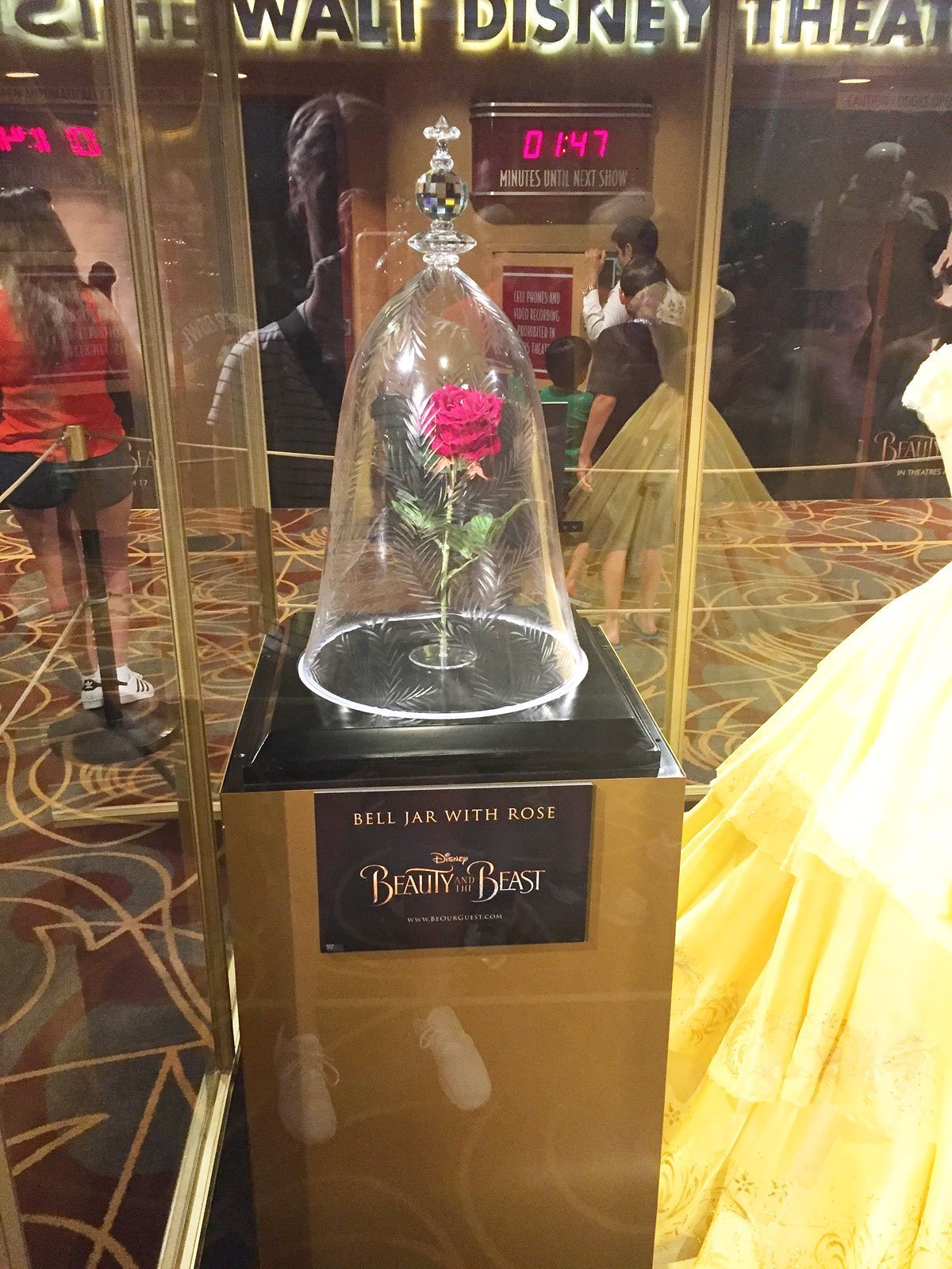 Jar with Rose from Beauty and The Beast Live Action Movie