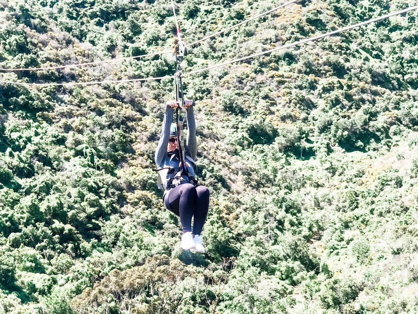 Catalina Island Zip Line Tour