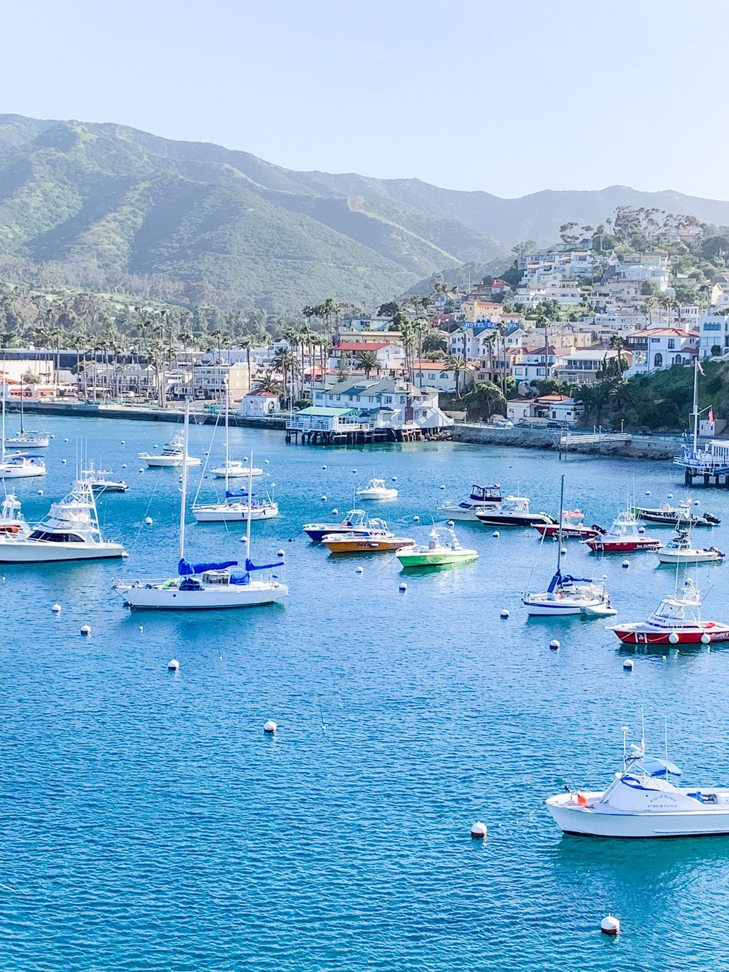 How to Spend Two Nights on Catalina Island