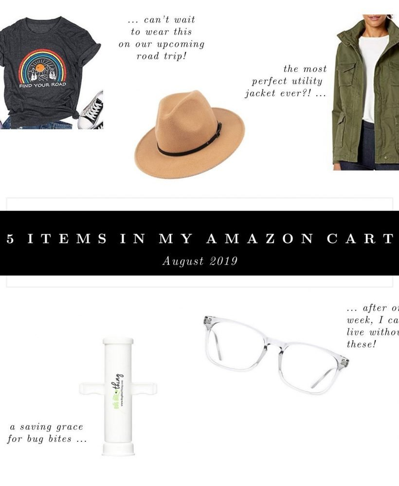 5 Items In My Amazon Cart August 2019